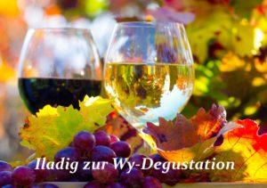 Weindegustation - Kopie